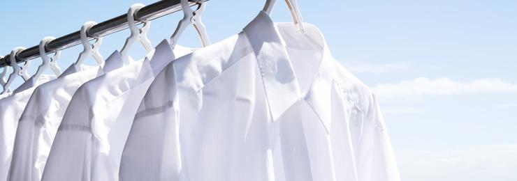 お布団や枕を定期的に洗っていますか?